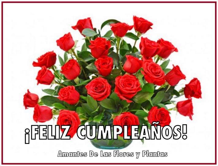 Cumpleanos De Feliz Imagenes De Ramos Rosas