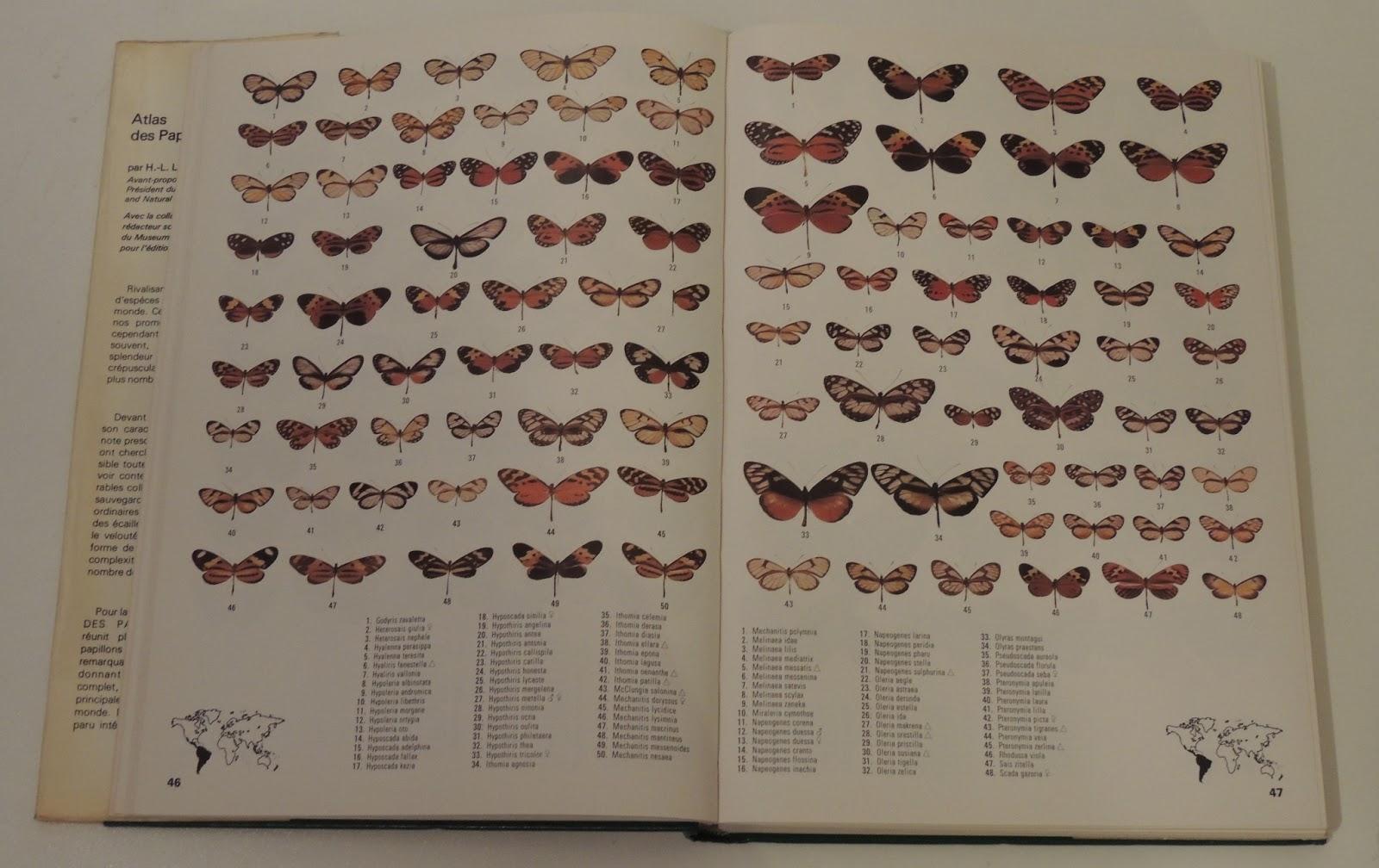 Atlas des papillons du monde