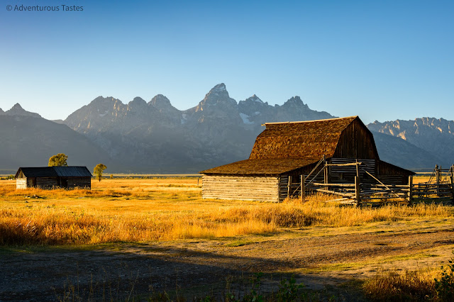 Adventurous Tastes | Golden light on an old farmhouse with mountain backdrop