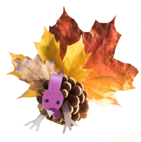 Turn pine-cones into adorable turkeys with this autumn craft for kids.  Turkey crafts for preschoolers. #pineconecrafts #pineconeturkey #pineconeturkeycraft #pineconeturkeysforkids #pineconeturkeyshowtomake #leafturkey #leafturkeycraft #turkeycraftsforpreschool #turkeycraftskids #fallcrafts #growingajeweledrose #activitiesforkids