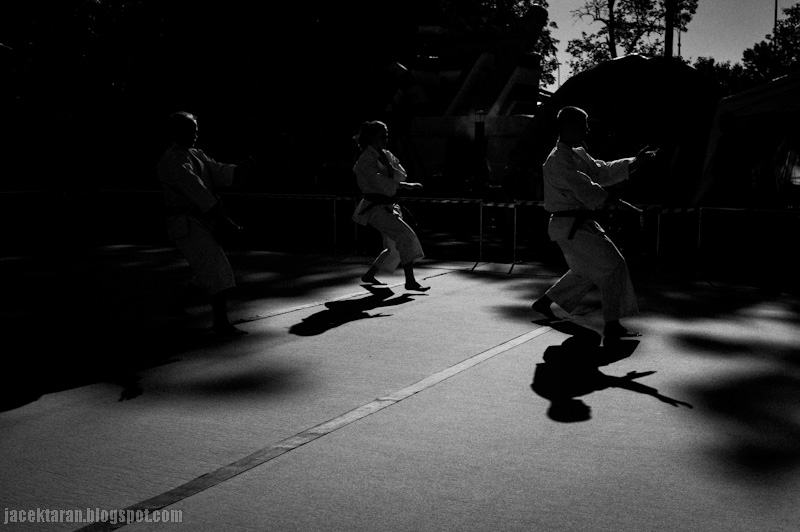 karate, akademia, niepolomice, krakow, zdjecia, jacek taran, sokol