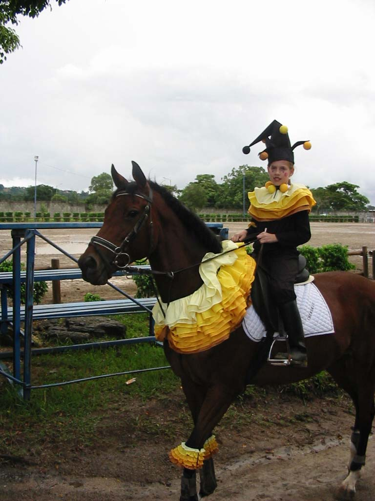 The Jungle Store: Animals In Halloween Costumes |Horse Fancy Dress Costumes