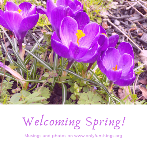 Welcoming Spring! Musings and Photography
