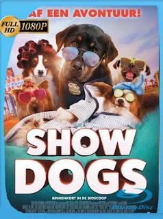 Superagente Canino (2018) HD [1080p] Latino [GoogleDrive] SilvestreHD