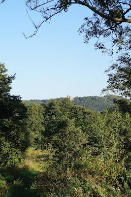 Szczytna zamek Leśna