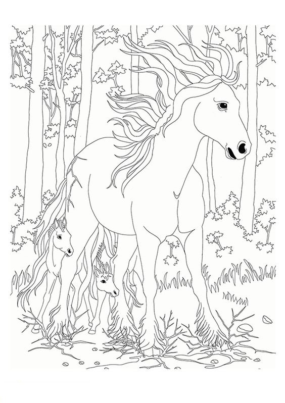 Tranh tô màu ngựa mẹ và ngựa con