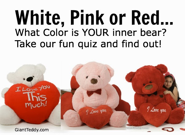 Take the Giant Teddy Quiz