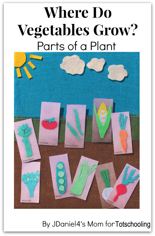 Where Do Vegetables Grow Gardening Craft With Free Printable