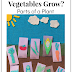 Where do Vegetables Grow? Gardening Craft with Free Printable