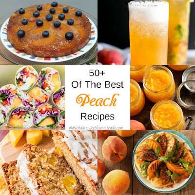 50+ Of The Best Peach Recipes: Home Sweet Homestead - August is National Peach Month, so I decided to share my Peach Recipe Roundup, that I've collected from around the blogosphere. Sweet to savory, from A to Z. Plus, tips on choosing and storing this juicy fruit.