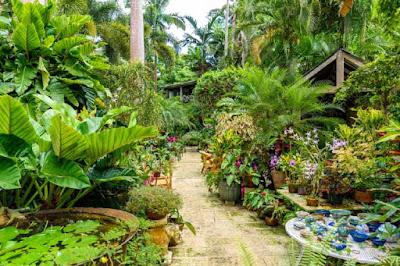 Entrée du jardin botanique d'Andromède ornée de fleurs à la Barbade.