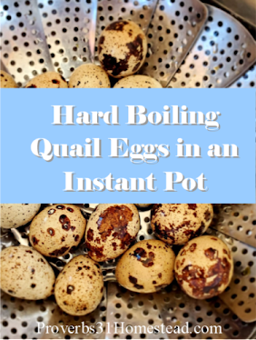 Hard Boiling Quail Eggs in an Instant Pot