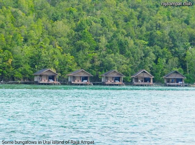 Raja Ampat accommodation in Urai island