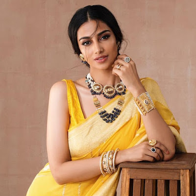 Meenakshi Chaudhary (Indian Actress) Biography, Wiki, Age, Height, Family, Career, Awards, and Many More