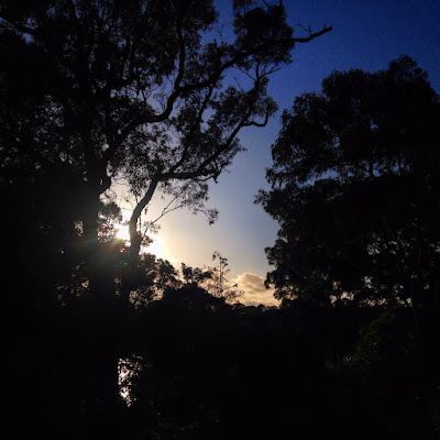 Sunrise at Oatley Park