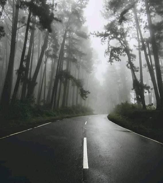 සුන්දර දිය පෙදෙස හෙවත් මීදුම් - දියතලාව 🌱🍃🎋🌳 ( Diyathalawa 🙏😇) - Your Choice Way
