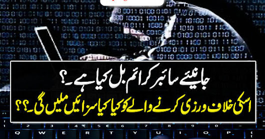 Cyber Crime Bill 2016 and How to File a Complaint