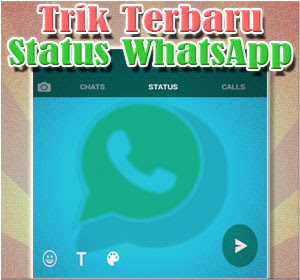 Trik Terbaru Di Fitur Status WhatsApp yang Jarang Diketahui