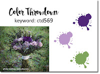 https://colorthrowdown.blogspot.com/2019/11/color-throwdown-569.html
