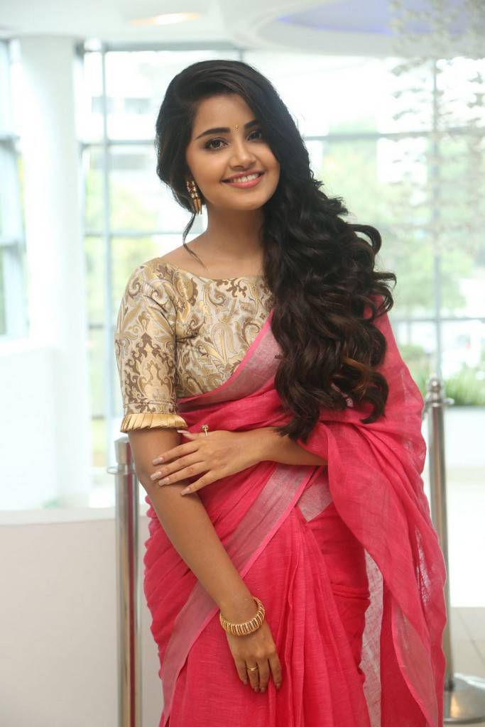 Anupama Parameswaran At Vunnadi Okate Zindagi Movie Thanks Meet Gallery