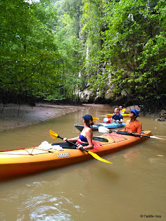 Kayaking in Krabi mangrove forest