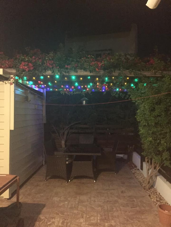 pretty lights in a villa garden