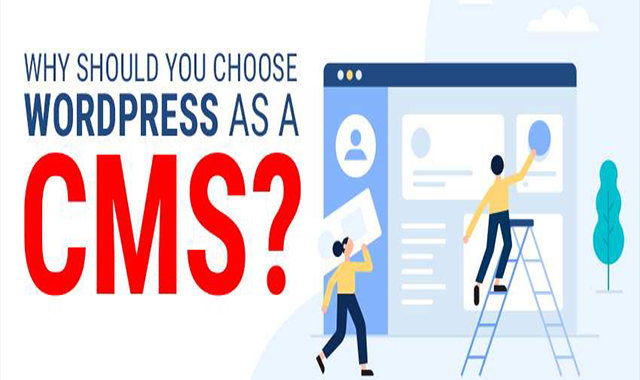 Why Should You Choose WordPress as a CMS #infographic