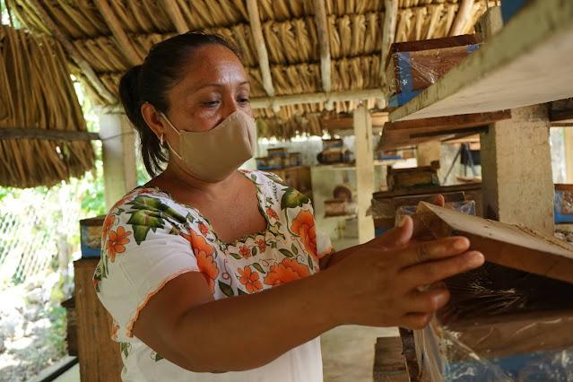 Teresita de Jesús Hau Jiménez abriendo una caja con una colmena de abejas meliponas sin aguijón. Foto: © PNUD Mexico, PPD Mexico, Claudia Novelo Alpuche