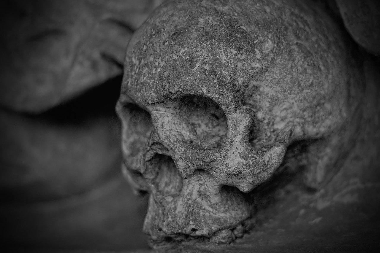 Antropologia a Ciência que Estuda o Homem