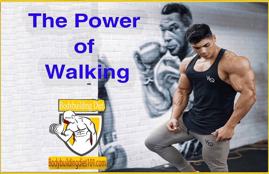 Health and Fitness - The Power of Walking