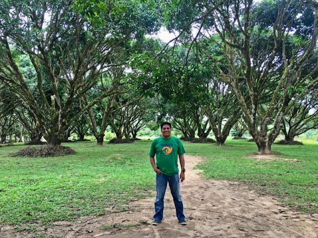 Guimaras National Mango Research Center