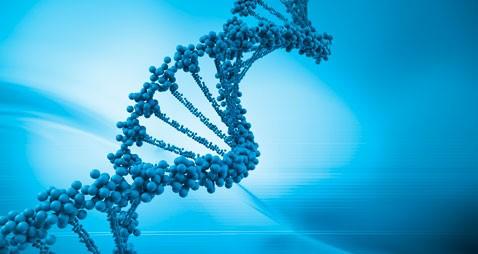 Course, Career & Job Opportunities in BioSciences