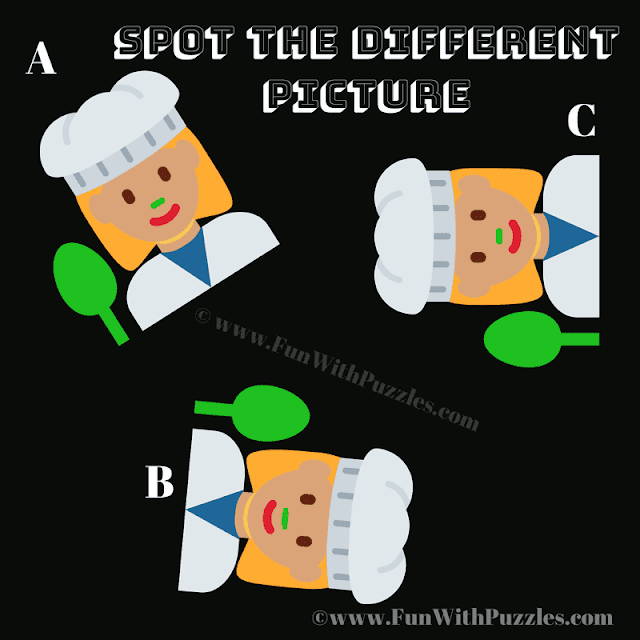 Spot the Difference Picture Puzzle