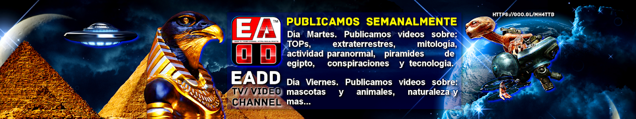 EADD TV / VIDEO CHANNEL