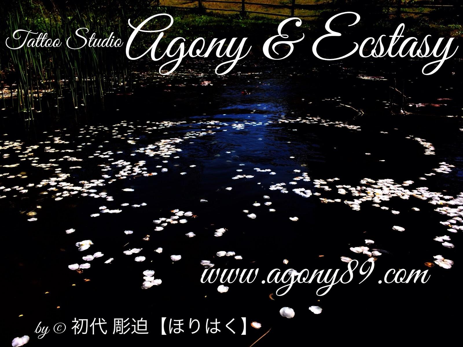 初代彫迫,ほりはく日記,彫迫日記,http://horihaku.blogspot.com/