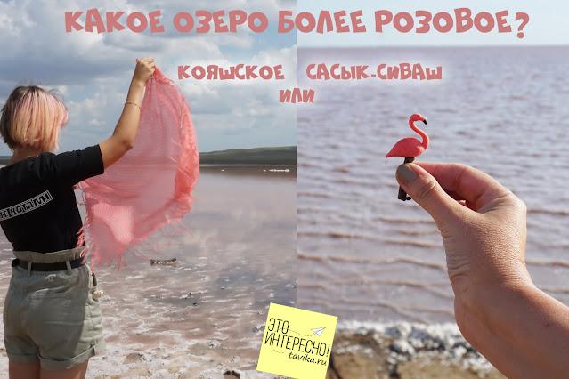 розовое озеро в Крыму