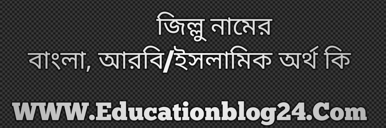 Zillu name meaning in Bengali, জিল্লু নামের অর্থ কি, জিল্লু নামের বাংলা অর্থ কি, জিল্লু নামের ইসলামিক অর্থ কি, জিল্লু কি ইসলামিক /আরবি নাম