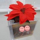 http://unhogarparamiscositas.blogspot.com.es/2016/01/empqtdobonito-con-cajas-de-cds-tiesto.html