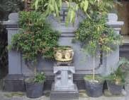 Aling-Aling Rumah Bali