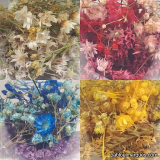 Flores en miniatura para miniaturas