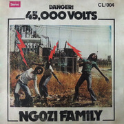 https://zamrockorg.blogspot.com/2019/02/ngozi-family-45000-volts.html