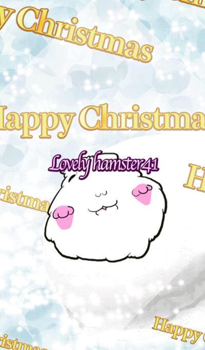 Lovely hamster41