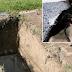 ΦΡΙΚΗ: Ξέθαψαν γυναίκα από τον τάφο για να τη Bιάσουν ομαδικά!!