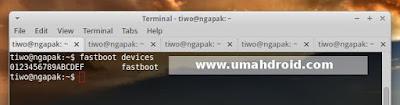 Fastboot Zenfone Linux