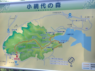 Koajironomori map