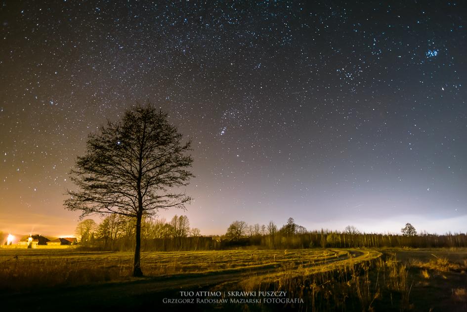 astrofotografia | fotografia nocna