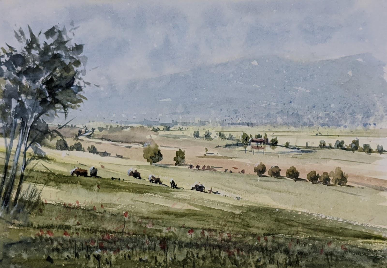 Grazing Meadow