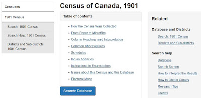 Screen capture of the Library and Archives Canada Census of Canada, 1901 page.