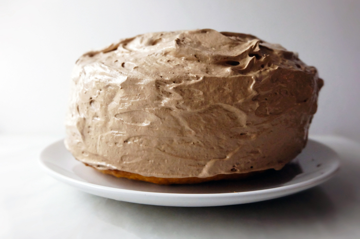 cake covered in cocoa mountain frosting