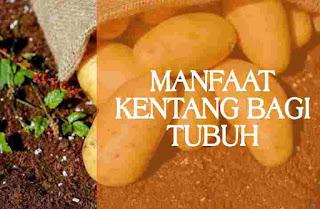 Manfaat kentang bagi tubuh